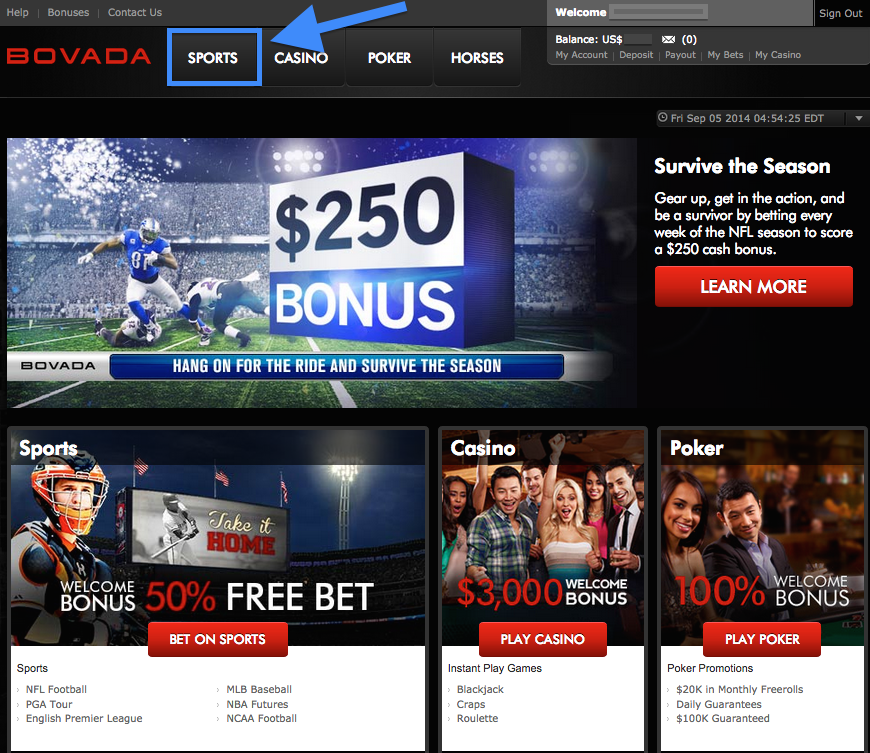 placing bet www.bovada