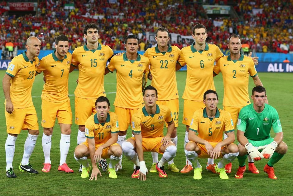 australian national soccer league