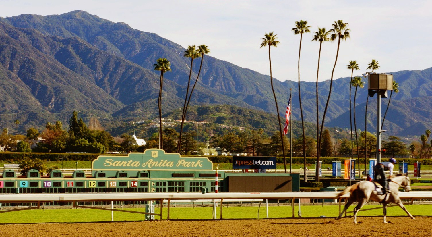 【coral】who Ll Romp To Glory At Santa Anita The