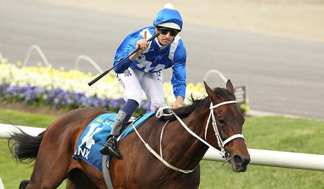 Cox plate 2021 betting calculator crystal palace v brighton betting odds
