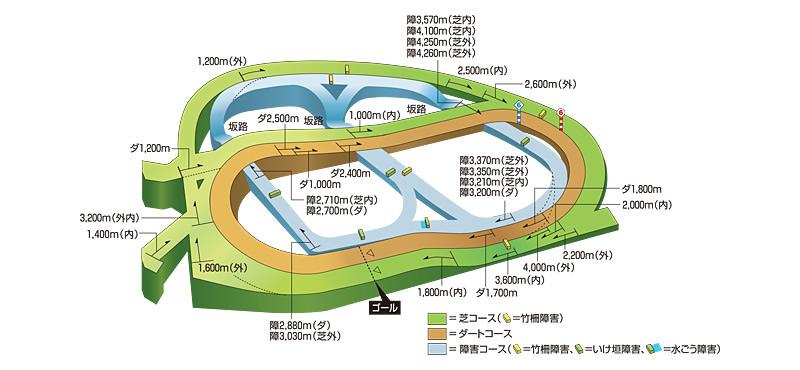 中山競馬場コース図